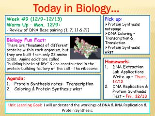 Pick up: Protein Synthesis notepage DNA Coloring – Transcription & Translation