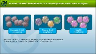 To view the WHO classification of B cell  neoplasms , select each category.