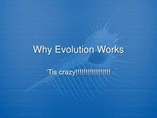 Why Evolution Works