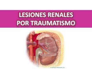 Lesiones renales Por traumatismo