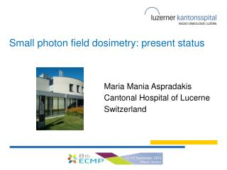 Small  photon field  dosimetry:  present status