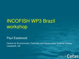 INCOFISH WP3 Brazil workshop