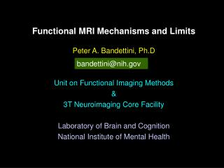 Functional MRI Mechanisms and Limits