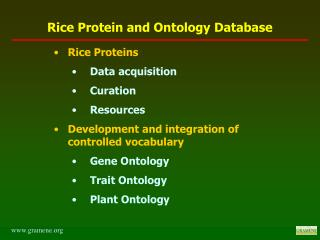Rice Proteins Data acquisition  Curation  Resources