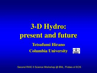 3-D Hydro: present and future