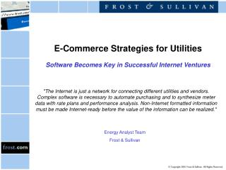 E-Commerce Strategies for Utilities Software Becomes Key in Successful Internet Ventures