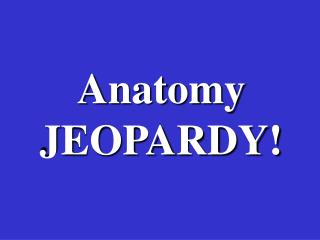 Anatomy JEOPARDY!