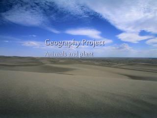 Geography Project	 	Animals and plant