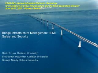 Bridge Infrastructure Management (BIM):  Safety and Security