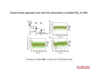 K Howan  et al. Nature 000 ,  1-4  (2012) doi:10.1038/nature11430
