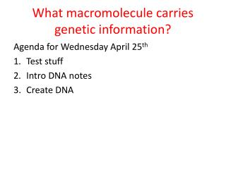What macromolecule carries genetic information?