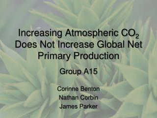 Increasing Atmospheric CO 2  Does Not Increase Global Net Primary Production