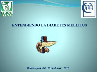ENTENDIENDO LA DIABETES MELLITUS