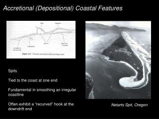Accretional (Depositional) Coastal Features