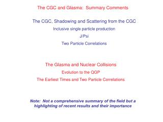 The CGC and Glasma: Summary Comments