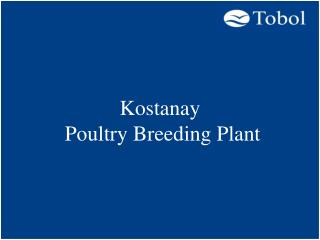 feasibility study on a poultry production Poultry farming business is the rearing of domesticated birds such as chickens and turkeys for the purpose of obtaining meat or eggs from them for food poultry are farmed in large numbers (commercially) with chickens being the plenteous.