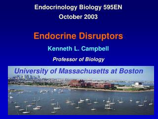 Endocrinology Biology 595EN  October 2003   Endocrine Disruptors Kenneth L. Campbell Professor of Biology University of