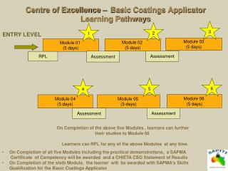 Centre of Excellence –  Basic Coatings Applicator Learning Pathways