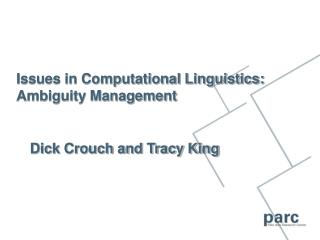 Issues in Computational Linguistics: Ambiguity Management