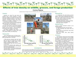 Effects of tree density on wildlife, grasses, and forage production