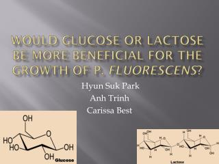 Would glucose or lactose be more beneficial for the growth of P.  fluorescens ?