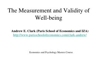 The Measurement and Validity of Well-being