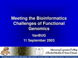 Meeting the Bioinformatics Challenges of Functional Genomics