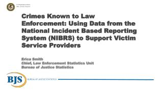 Establishing a  statistical research program in victim services