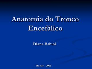 Anatomia do Tronco Encefálico