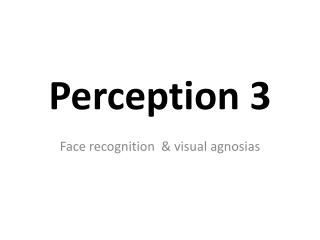 Perception 3