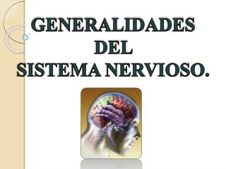 GENERALIDADES DEL  SISTEMA NERVIOSO.