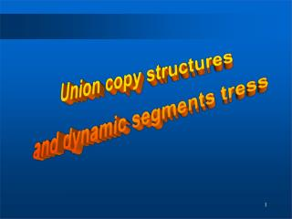 Union copy structures and dynamic segments tress