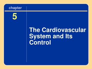 The Cardiovascular System and Its Control