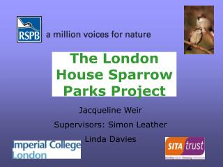 The London  House Sparrow  Parks Project