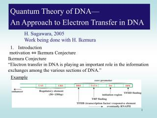 Quantum Theory of DNA— An Approach to Electron Transfer in DNA