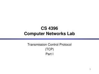 CS 4396  Computer Networks Lab