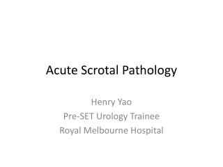 Acute Scrotal Pathology