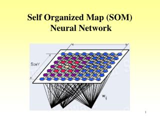 Self Organized Map (SOM)  Neural Network