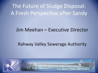The Future of Sludge Disposal:  A Fresh Perspective after Sandy