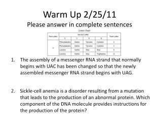 Warm Up 2/25/11 Please answer in complete sentences
