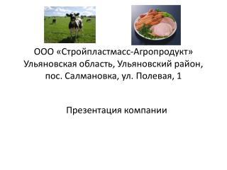 Презентация компании