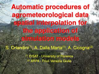 Automatic procedures of agrometeorological data spatial interpolation for the application of simulation models