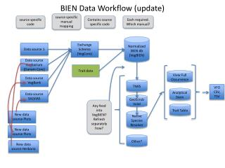 BIEN Data  Workflow (update)
