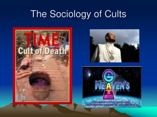 Cults and Society