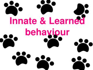 Innate & Learned behaviour