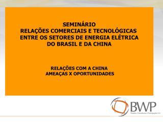 SEMINÁRIO RELAÇÕES COMERCIAIS E TECNOLÓGICAS ENTRE OS SETORES DE ENERGIA ELÉTRICA