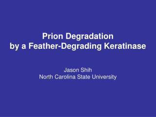 Prion Degradation by a Feather-Degrading Keratinase