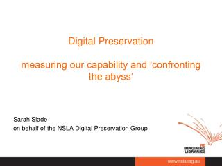 Digital  Preservation measuring our capability and 'confronting the  abyss'