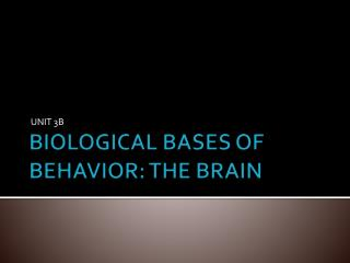 BIOLOGICAL BASES OF BEHAVIOR: THE BRAIN