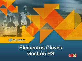 Elementos Claves Gestión HS